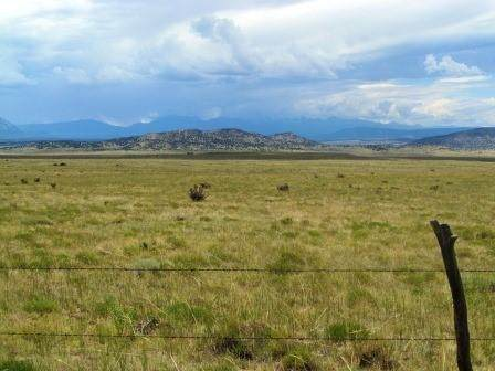 18 Majors Ranch Phase 1 - Photo 1