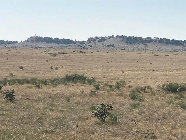 Turkey Ridge Ranch #9, Walsenburg, CO 81089 (MLS #20-1021) :: Bachman & Associates
