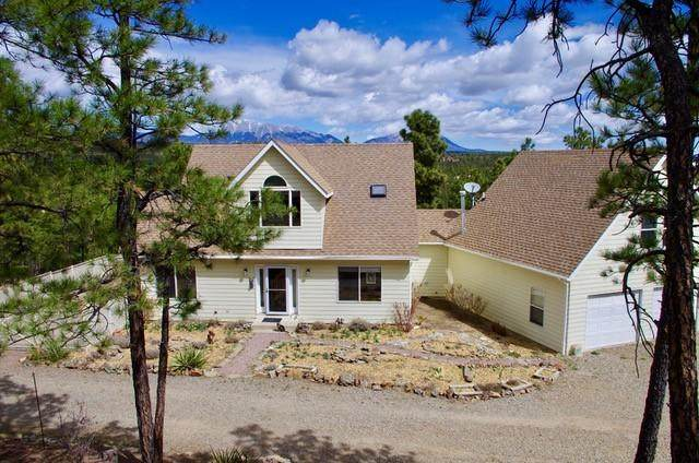 13121 Northridge Rd, Weston, CO 81091 (MLS #20-327) :: Bachman & Associates