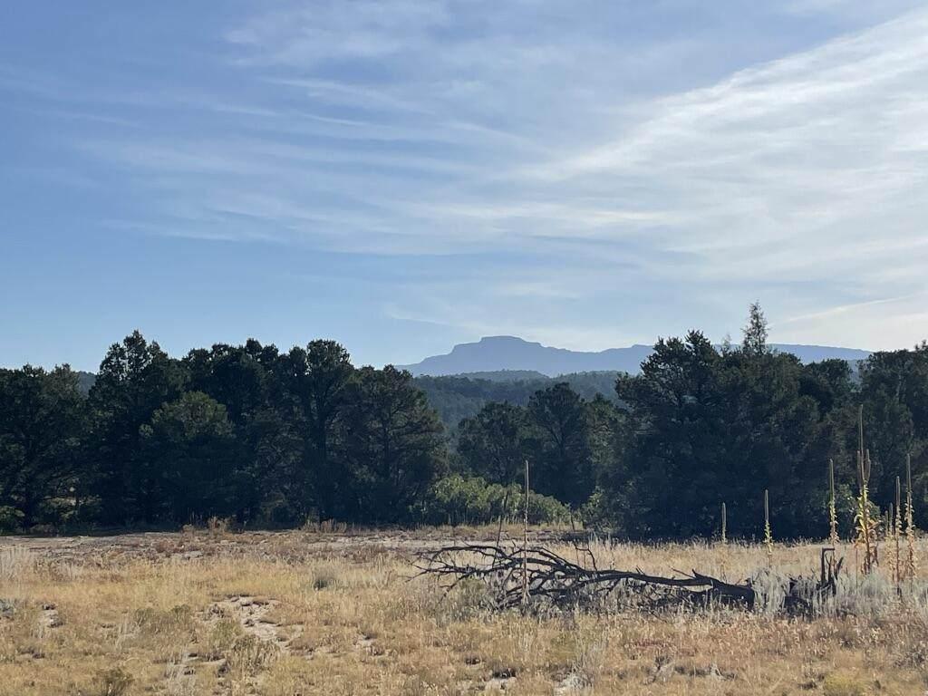 TBD Colorado Mountain Lake Estates - Photo 1