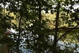0 Buck Creek Road - Photo 10