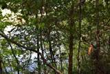 0 Buck Creek Road - Photo 9
