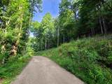 Lot 44 Laurel Mountain View Road - Photo 1