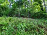 Lot 44 Laurel Mountain View Road - Photo 5