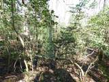 115 Forest Road - Photo 24