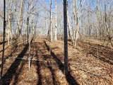 Lot 27 Cross Creek Trail - Photo 11