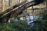 735 Cowford Bridge Rd - Photo 6