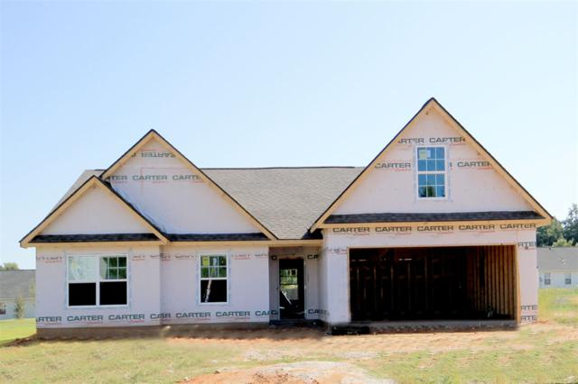 225 Catterick Way, Fountain Inn, SC 39644 (#247157) :: Connie Rice and Partners