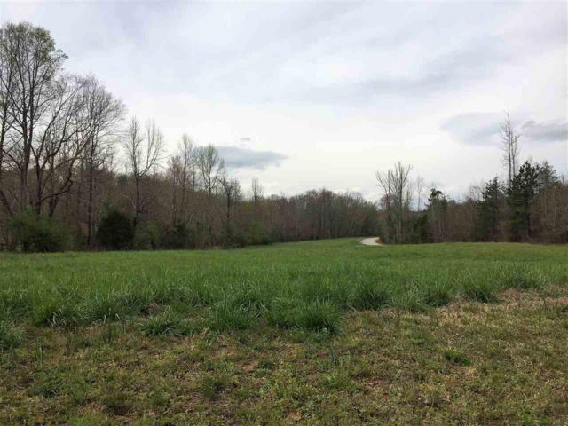 0 Arlys Lane, Lot 7, Tryon, NC 28782 (#250859) :: Connie Rice and Partners