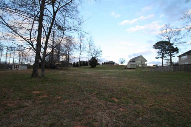 275 Morningview Drive, Landrum, SC 29356 (#253298) :: Century 21 Blackwell & Co. Realty, Inc.