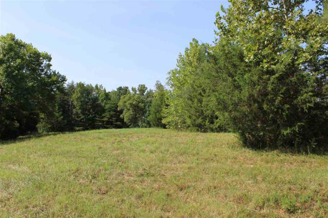 Lot 2 Edwards Road, Columbus, NC 28722 (#254771) :: Connie Rice and Partners
