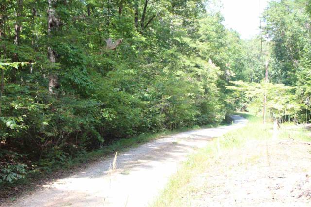 000 Artesian Lane, Columbus, NC 28722 (#255154) :: Connie Rice and Partners