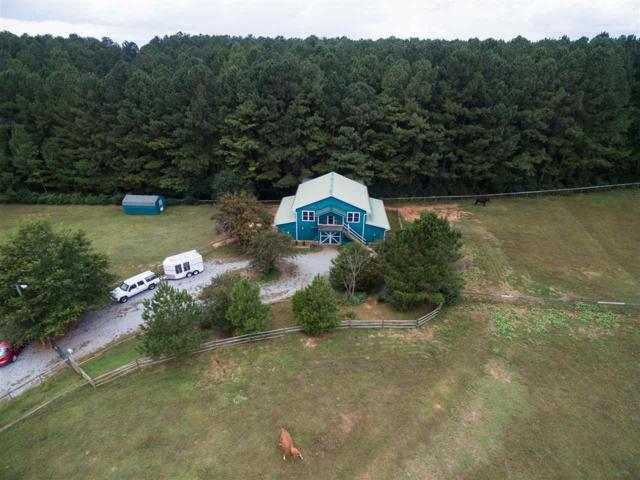 1249 John Weaver Road, Columbus, NC 28722 (#255970) :: Connie Rice and Partners