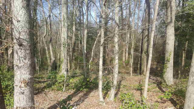0 Riverside Lane, Duncan, SC 29334 (MLS #259806) :: Prime Realty