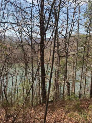 0 Hawk Ridge, Mill Spring, NC 28756 (#260584) :: Century 21 Blackwell & Co. Realty, Inc.