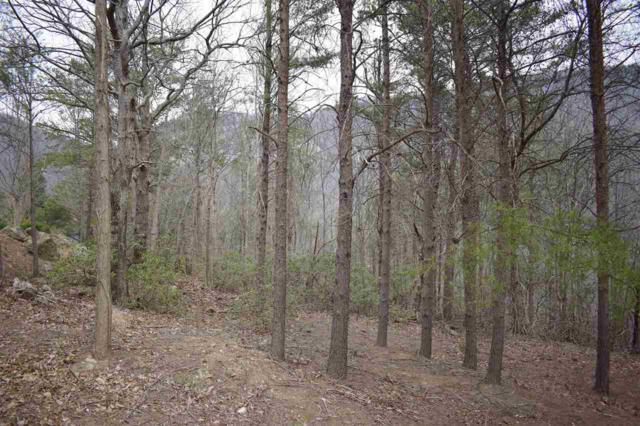 319 Foggy Cut Lane, Landrum, SC 29356 (#260779) :: Century 21 Blackwell & Co. Realty, Inc.