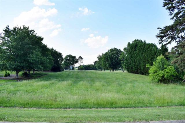 361 Royal Burgess Drive, Campobello, SC 29322 (#261672) :: Century 21 Blackwell & Co. Realty, Inc.