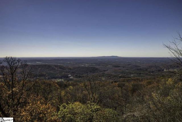 112 Blazing Star Trail, Landrum, SC 29356 (#262806) :: Century 21 Blackwell & Co. Realty, Inc.