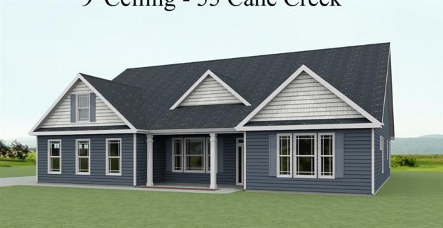 373 Roy Hall Way, Campobello, SC 29322 (#263459) :: Connie Rice and Partners