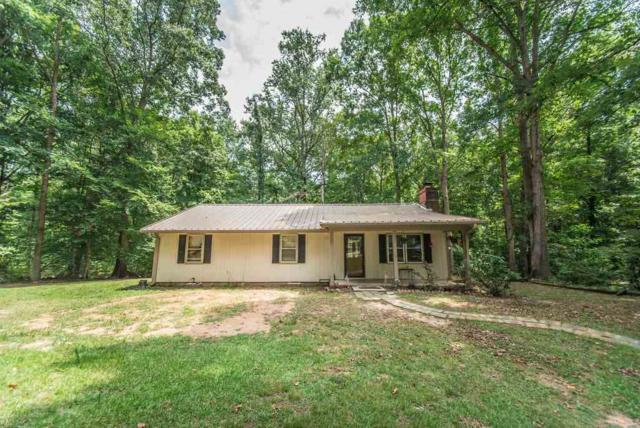 159 Pineapple Ln, Laurens, SC 29360 (#263834) :: Connie Rice and Partners