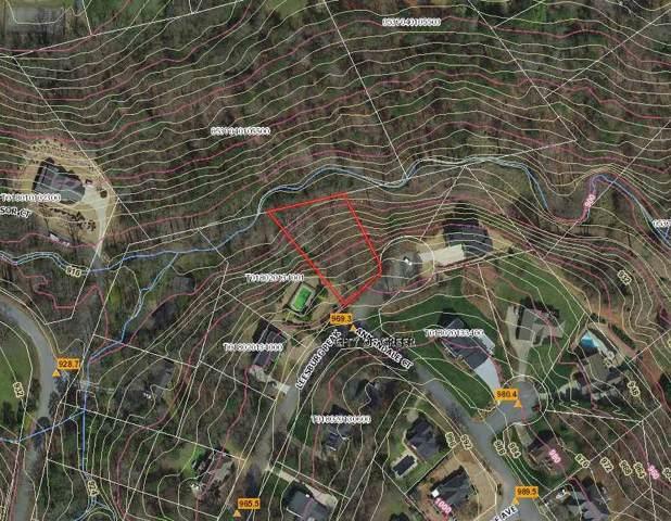 123 Leesburg Peak, Greer, SC 29651 (#266050) :: Century 21 Blackwell & Co. Realty, Inc.
