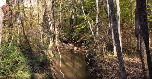 0 Belue Mill Road, Landrum, SC 29356 (MLS #266921) :: Prime Realty