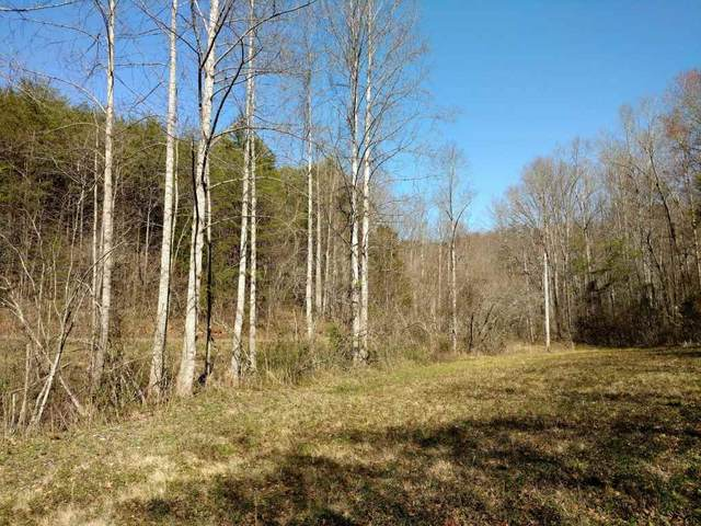 000 Lazy Acres Ln., Lake Lure, NC 28139 (#270253) :: Connie Rice and Partners