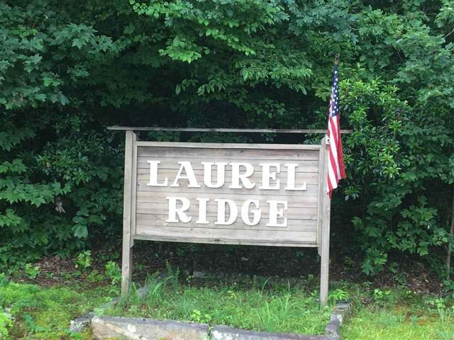 00 Laurel Ridge Drive, Pumpkintown, SC 29671 (#272588) :: Expert Real Estate Team