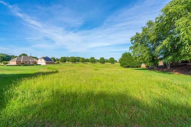 227 Vista Pointe Drive, Greer, SC 29651 (#272988) :: Rupesh Patel Home Selling Team | eXp Realty