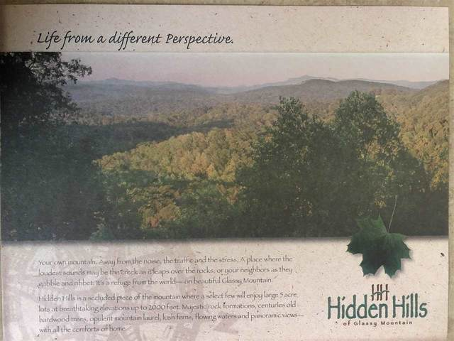 Lot 13 Hideaway Hill Way, Landrum, SC 29356 (#274079) :: Century 21 Blackwell & Co. Realty, Inc.