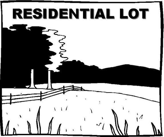 00 Butter Street, Landrum, SC 29356 (#275155) :: Rupesh Patel Home Selling Team | eXp Realty