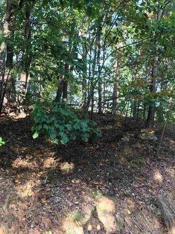 Lot 20 Hemlock Trail, Columbus, NC 28722 (#275579) :: The RP3 Group | eXp Realty