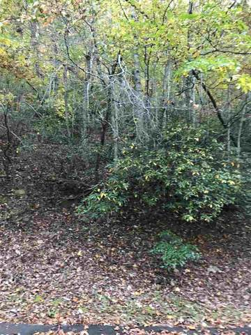 Lot 48 Blockaders Den, Columbus, NC 28722 (#275584) :: The RP3 Group | eXp Realty