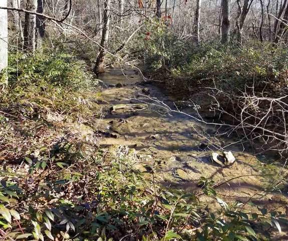 Lot 27 Cross Creek Trail, Columbus, NC 28722 (MLS #277947) :: Prime Realty