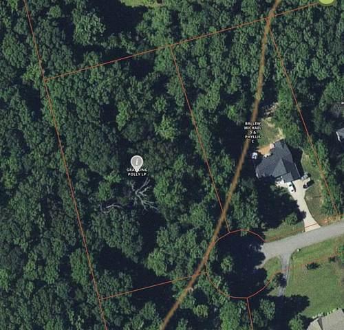 125 Pine Needles Drive, Campobello, SC 29322 (#279528) :: Rupesh Patel Home Selling Team | eXp Realty