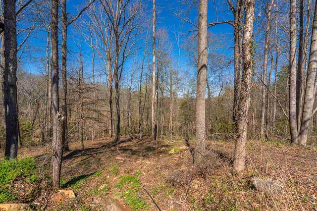 6 Bagwell Place, Spartanburg, SC 29302 (#279721) :: Realty ONE Group Freedom