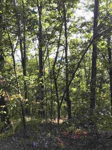 Lot 47 White Oak Mt Rd, Columbus, NC 28722 (MLS #279729) :: Prime Realty