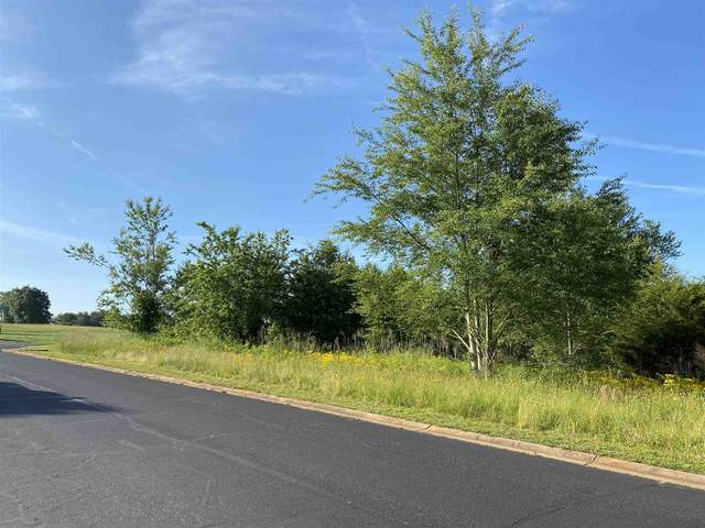 247 Prominence Ridge Drive, Chesnee, SC 29323 (#280927) :: Modern