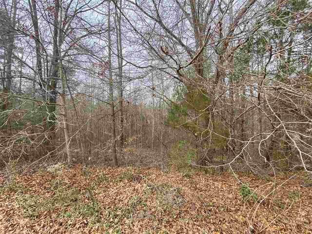 335 Deer Trail Ln, Woodruff, SC 29388 (#281165) :: DeYoung & Company