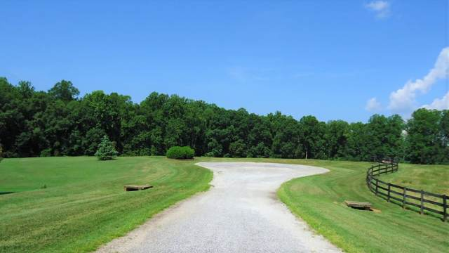 150 Hunter Hack Trail, Campobello, SC 29322 (#282466) :: Modern