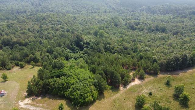 463 Quarter Round Rd, Pacolet, SC 29372 (MLS #282675) :: Prime Realty
