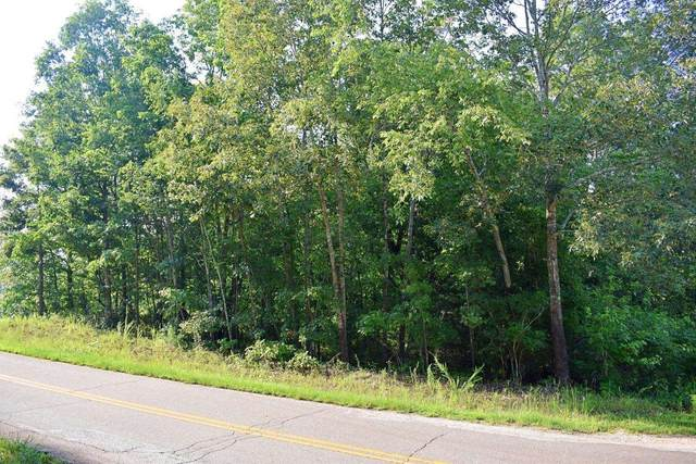 Stacey Road, Rutherfordton, NC 28139 (#282840) :: Modern