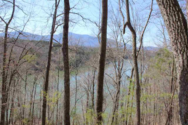 Lot 22 Mountain Parkway, Mill Spring, NC 28756 (#260431) :: Century 21 Blackwell & Co. Realty, Inc.