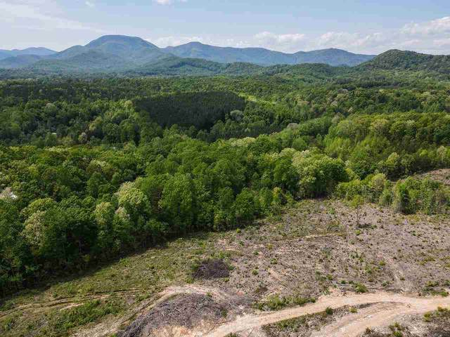 Tract D Belue Mill Rd, Landrum, SC 29356 (#280142) :: DeYoung & Company