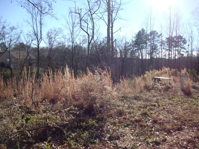 Lot 126  890 Affirmed Drive, Boiling Springs, SC 29316 (#215322) :: Century 21 Blackwell & Co. Realty, Inc.
