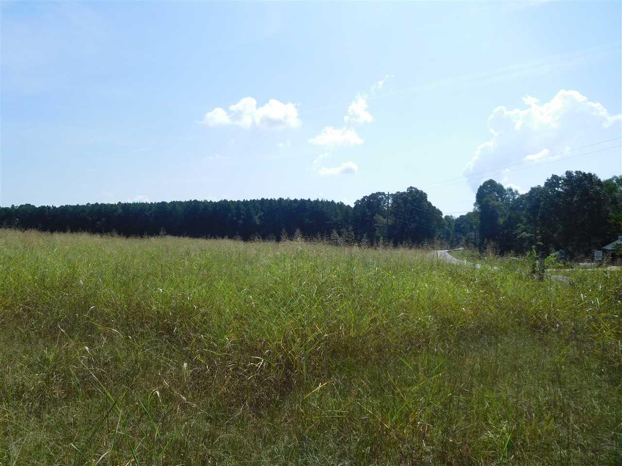 0 Grassy Pond Rd & Natures Trail - Photo 1