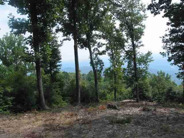 LOT 121 Lost Trail Drive, Landrum, SC 29356 (#258993) :: Connie Rice and Partners