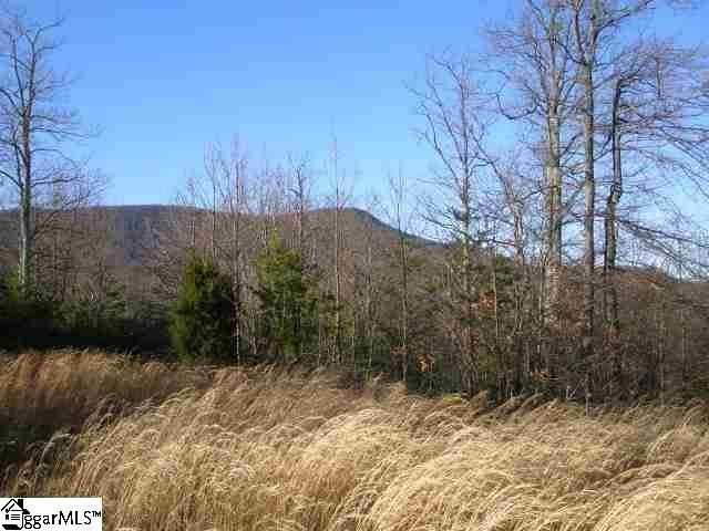 105 Eagle Rock Road, Landrum, SC 29356 (#259021) :: Connie Rice and Partners