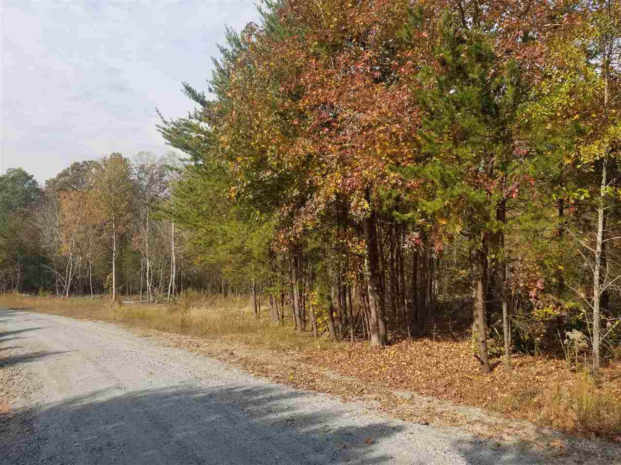00 Forest Trail Dr. - Photo 1