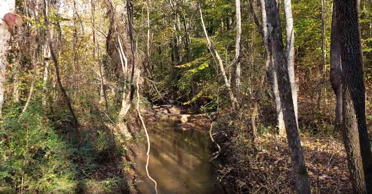 0 Belue Mill Road - Photo 1